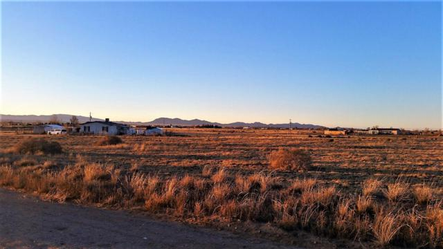 Palomino Drive, Lot 35, Moriarty, NM 87035 (MLS #910753) :: The Bigelow Team / Red Fox Realty