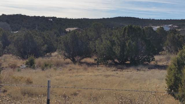 9 A Camino Derecho, Edgewood, NM 87015 (MLS #911947) :: The Buchman Group