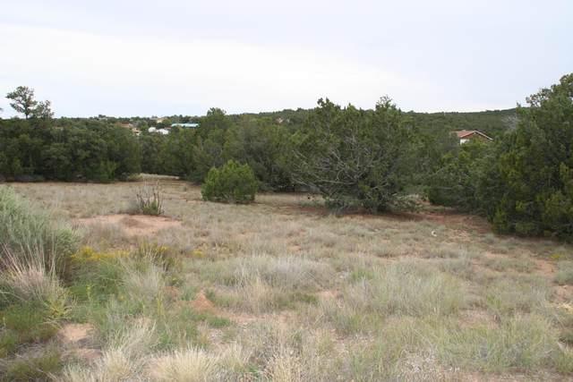 9 B Camino Derecho #    B, Edgewood, NM 87015 (MLS #911948) :: Keller Williams Realty