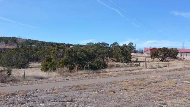 1862 B Old U 66 # B, Edgewood, NM 87015 (MLS #911950) :: Keller Williams Realty