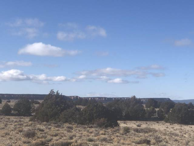 Tract 2 James Valley Ranch, Ramah, NM 87321 (MLS #911984) :: The Bigelow Team / Red Fox Realty