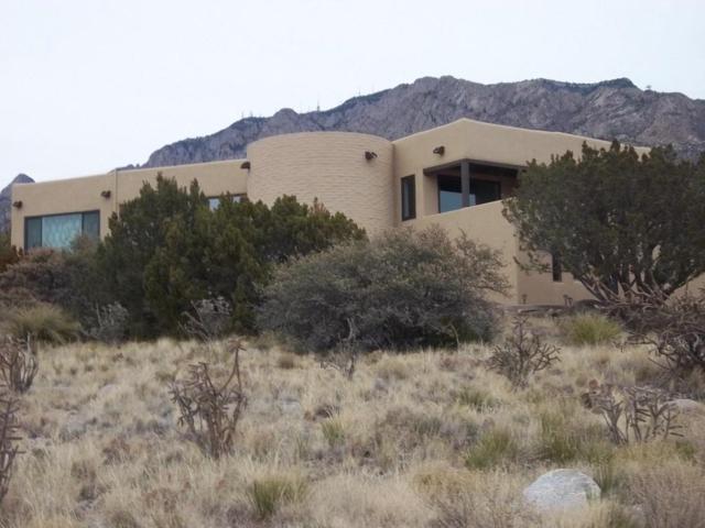 120 Live Oak Road NE, Albuquerque, NM 87122 (MLS #912740) :: Your Casa Team