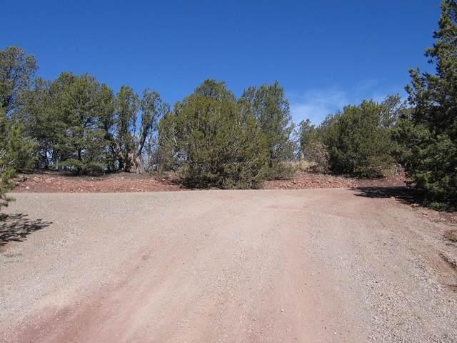 4 Juniper Ridge Road, Tijeras, NM 87059 (MLS #912828) :: Berkshire Hathaway HomeServices Santa Fe Real Estate