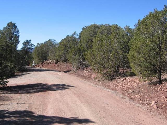 6 Juniper Ridge Road, Tijeras, NM 87059 (MLS #912830) :: The Buchman Group