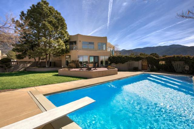 1439 Honeysuckle Drive NE, Albuquerque, NM 87122 (MLS #912897) :: Your Casa Team