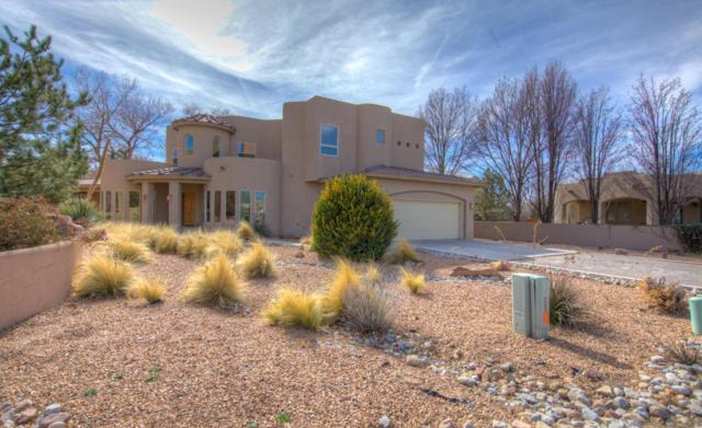 1004 Tierra Viva Court NW, Albuquerque, NM 87107 (MLS #912966) :: Your Casa Team