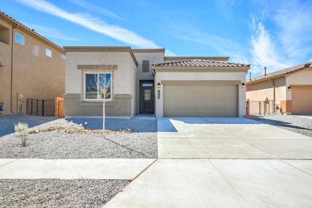 1660 Valle Vista NW, Los Lunas, NM 87031 (MLS #914099) :: Campbell & Campbell Real Estate Services