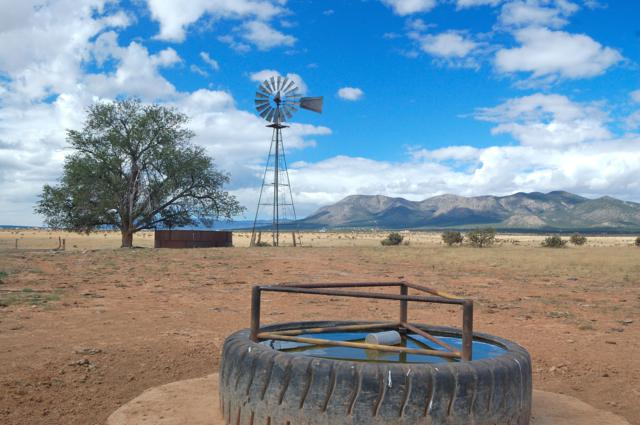 Rvs Ranch, Edgewood, NM 87015 (MLS #914226) :: The Bigelow Team / Realty One of New Mexico