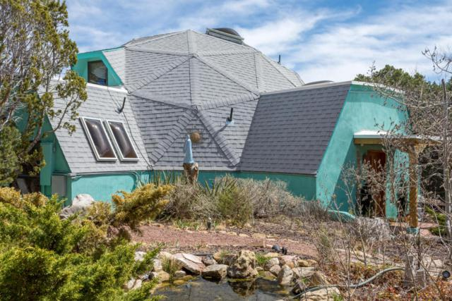242 Pinon Trail, Cedar Crest, NM 87008 (MLS #914485) :: Campbell & Campbell Real Estate Services