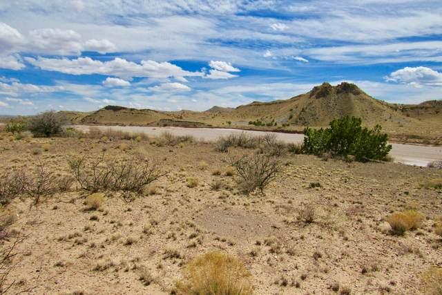 65 Santa Rita Ranches, Riley, NM 87825 (MLS #914710) :: Berkshire Hathaway HomeServices Santa Fe Real Estate