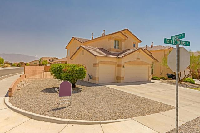 2129 Vista De Colinas Drive SE, Rio Rancho, NM 87124 (MLS #915528) :: Your Casa Team
