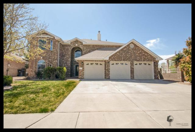 2832 West Island Loop SE, Rio Rancho, NM 87124 (MLS #916567) :: Campbell & Campbell Real Estate Services