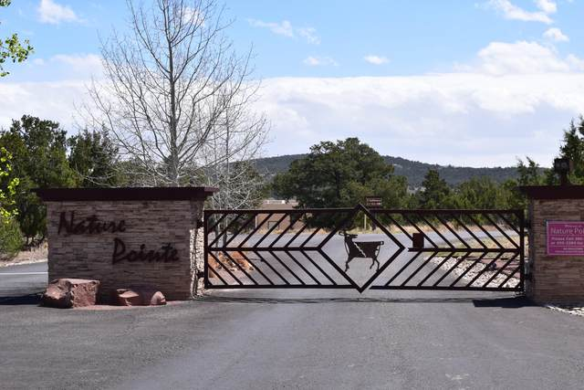 Lot 27 Nature Pointe Drive, Tijeras, NM 87059 (MLS #916788) :: The Buchman Group