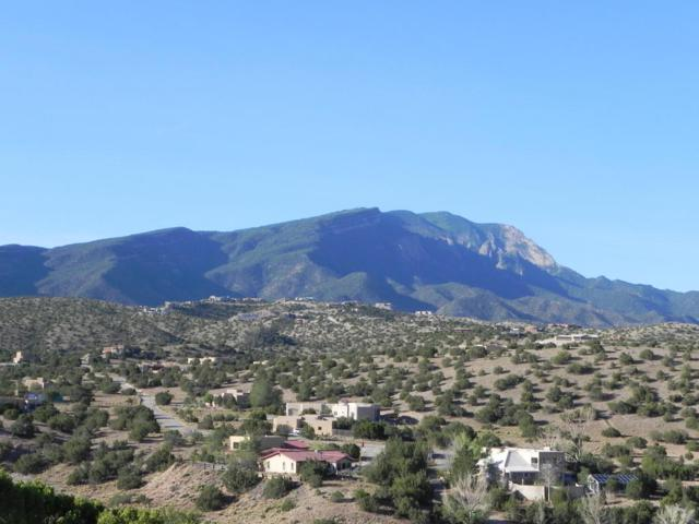 5 Windmill Court, Placitas, NM 87043 (MLS #917006) :: Campbell & Campbell Real Estate Services