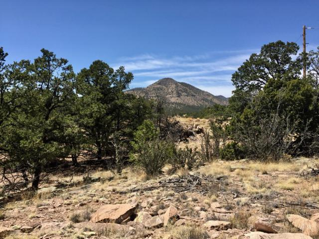 67 & 68 Lookout Circle, Datil, NM 87821 (MLS #917201) :: Keller Williams Realty