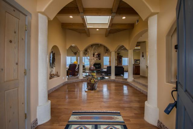 95 Overlook Drive, Placitas, NM 87043 (MLS #918404) :: Campbell & Campbell Real Estate Services
