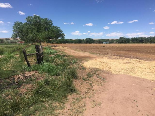 Veguita Farmroad SW, Veguita, NM 87062 (MLS #918534) :: Campbell & Campbell Real Estate Services