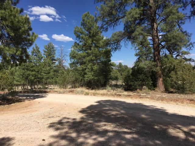 Lot 5 East Elk Drive, Ramah, NM 87321 (MLS #919348) :: Will Beecher at Keller Williams Realty
