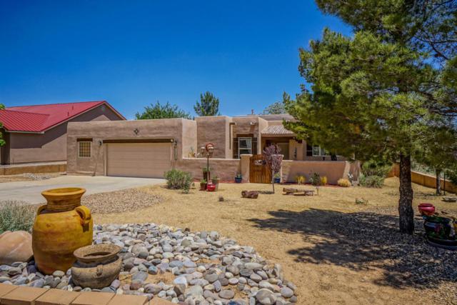 3210 Oldenburg Road NE, Rio Rancho, NM 87144 (MLS #919510) :: Will Beecher at Keller Williams Realty