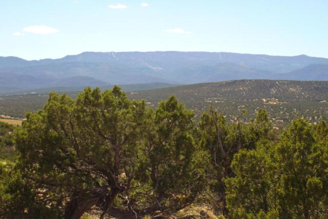 26 Stage Coach Trail, Sandia Park, NM 87047 (MLS #919570) :: The Stratmoen & Mesch Team