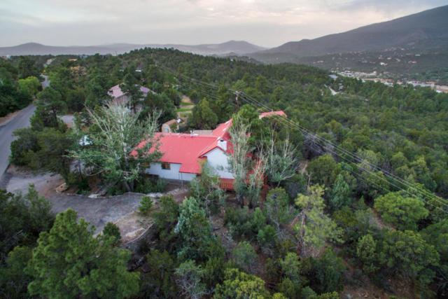 113 Sangre De Cristo, Cedar Crest, NM 87008 (MLS #920225) :: Campbell & Campbell Real Estate Services