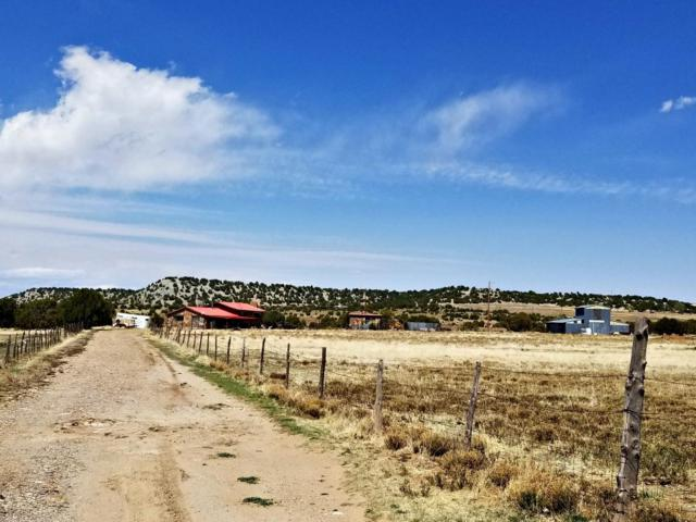 165 County Rd, C23, Las Vegas, NM 87701 (MLS #920407) :: The Bigelow Team / Realty One of New Mexico