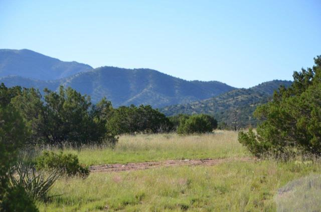 47 Stagecoach Trail, Sandia Park, NM 87047 (MLS #920648) :: The Stratmoen & Mesch Team
