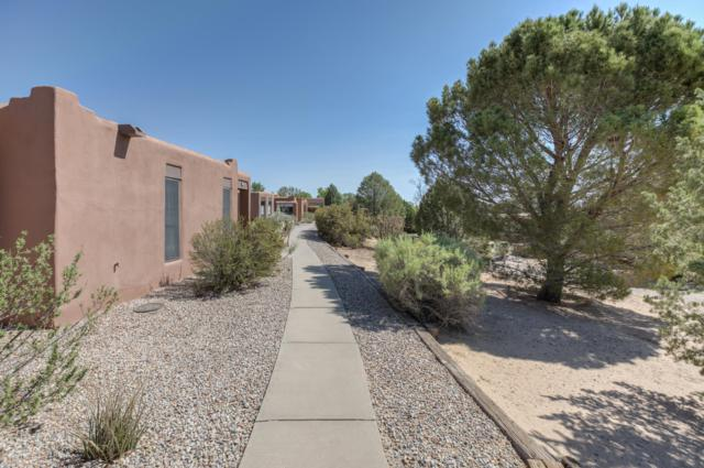 4 Santo Domingo Trail, Corrales, NM 87048 (MLS #920671) :: Campbell & Campbell Real Estate Services