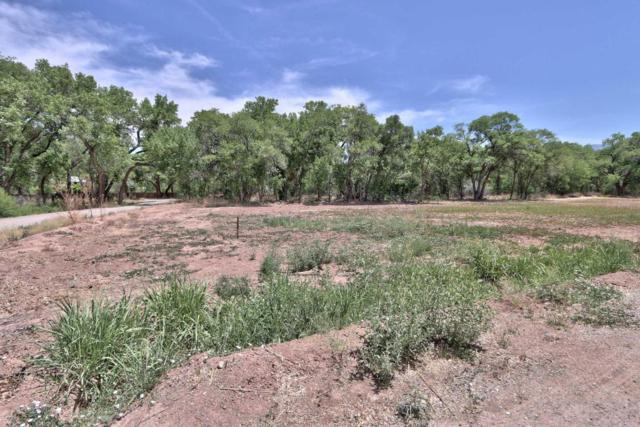 500 Toad Road, Corrales, NM 87048 (MLS #921206) :: Campbell & Campbell Real Estate Services