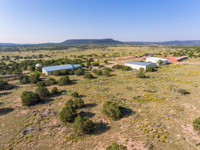 5606 State Highway 55, Mountainair, NM 87036 (MLS #921334) :: Silesha & Company