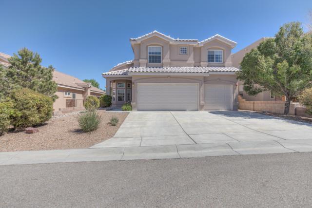 8908 Abis Court NE, Albuquerque, NM 87113 (MLS #921879) :: Campbell & Campbell Real Estate Services