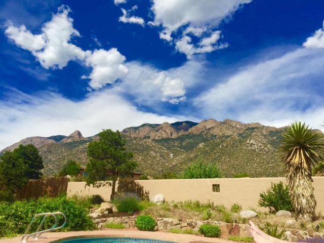646 Cougar Loop NE, Albuquerque, NM 87122 (MLS #922516) :: Your Casa Team