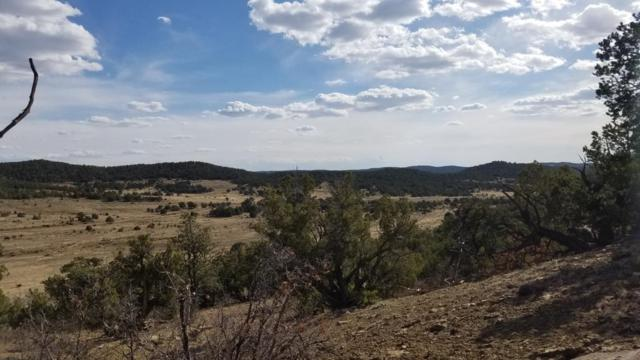 U4 Lot 18 Wild Horse Ranch, Pie Town, NM 87827 (MLS #922622) :: The Buchman Group