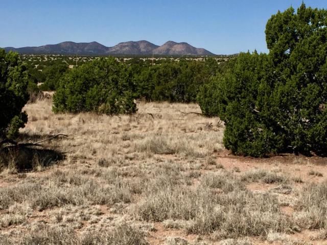 61 Forest Road 123, Magdalena, NM 87825 (MLS #922738) :: Campbell & Campbell Real Estate Services