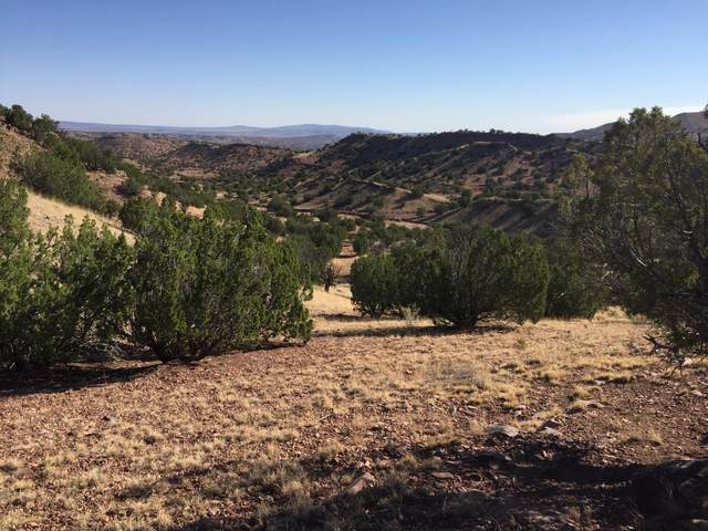 13 Abbe Springs Ranches, Magdalena, NM 87825 (MLS #922739) :: The Buchman Group