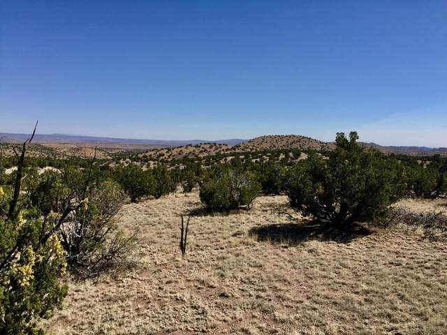 42 Abbe Springs Ranches, Magdalena, NM 87825 (MLS #922740) :: The Buchman Group