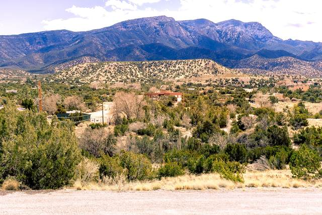 Lot E Yucca Lane, Placitas, NM 87043 (MLS #922903) :: The Bigelow Team / Red Fox Realty
