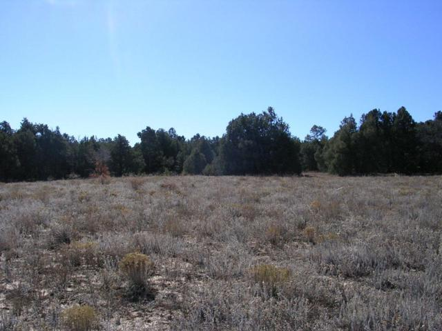 89 San Isidro Parcel A East Side Road, Tijeras, NM 87059 (MLS #923716) :: Your Casa Team