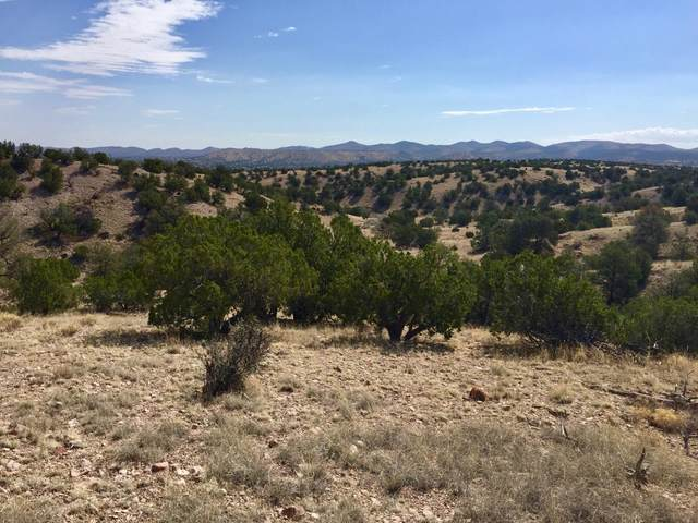 194 Campfire Road, Magdalena, NM 87825 (MLS #923747) :: The Buchman Group