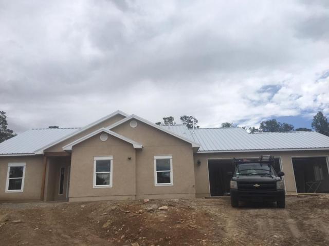 117 Via Sedillo Road, Tijeras, NM 87059 (MLS #924001) :: Will Beecher at Keller Williams Realty