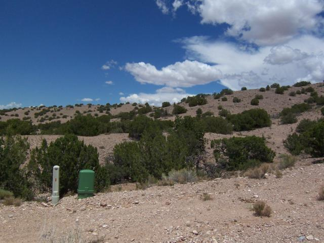Palomar Rd - 4 Lots, Placitas, NM 87043 (MLS #924078) :: Campbell & Campbell Real Estate Services