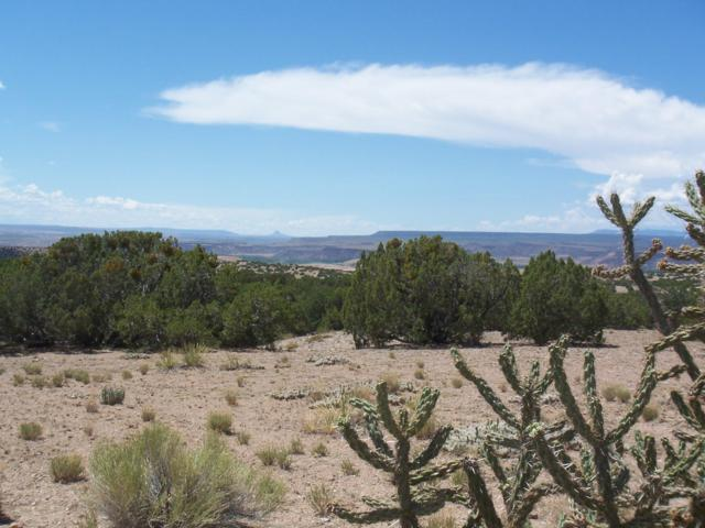 Palomar Rd - Lot 21, Placitas, NM 87043 (MLS #924082) :: Campbell & Campbell Real Estate Services