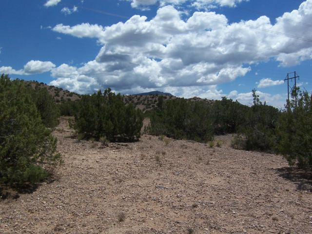 Palomar Rd - Lot 16, Placitas, NM 87043 (MLS #924088) :: Campbell & Campbell Real Estate Services
