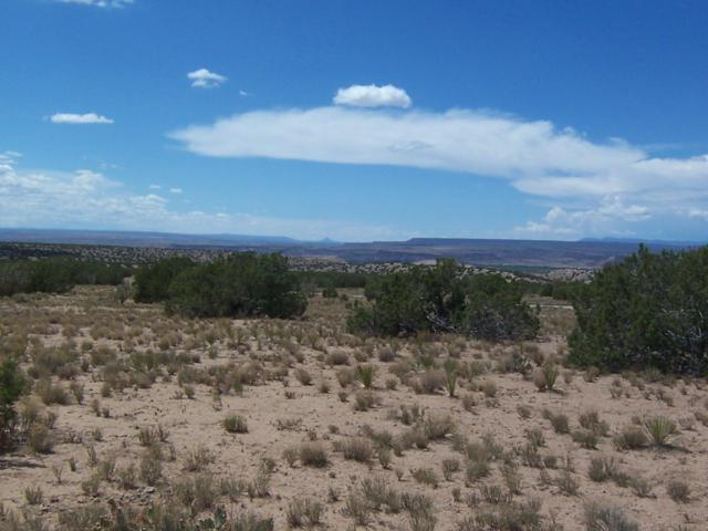 Palomar Rd - Lot 13, Placitas, NM 87043 (MLS #924091) :: Campbell & Campbell Real Estate Services