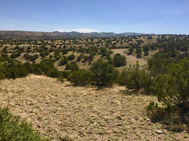 66 Forest Road 123, Magdalena, NM 87825 (MLS #924850) :: The Buchman Group