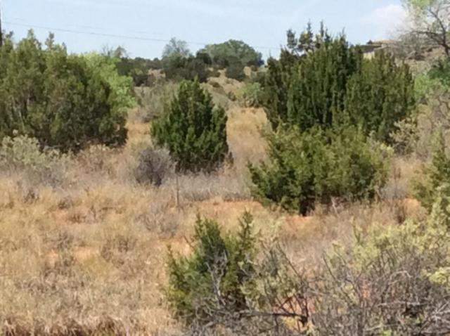 State Hwy 165 Camino Del Torreon, Placitas, NM 87043 (MLS #925542) :: Campbell & Campbell Real Estate Services