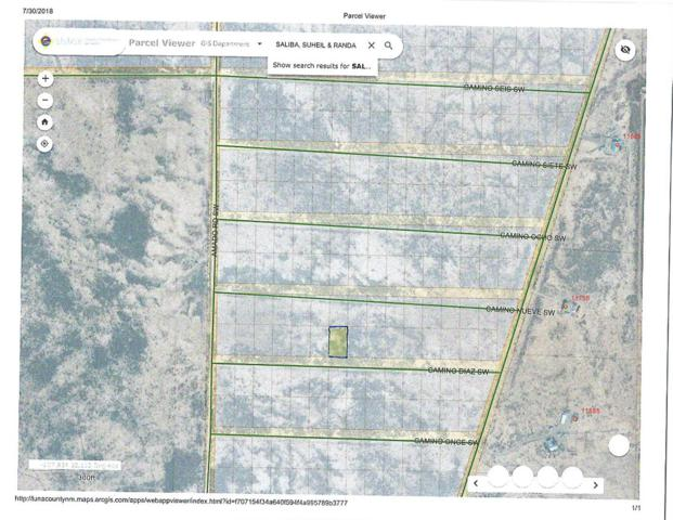 Tract 22 Camino Diaz SW, Deming, NM 88030 (MLS #925573) :: The Buchman Group