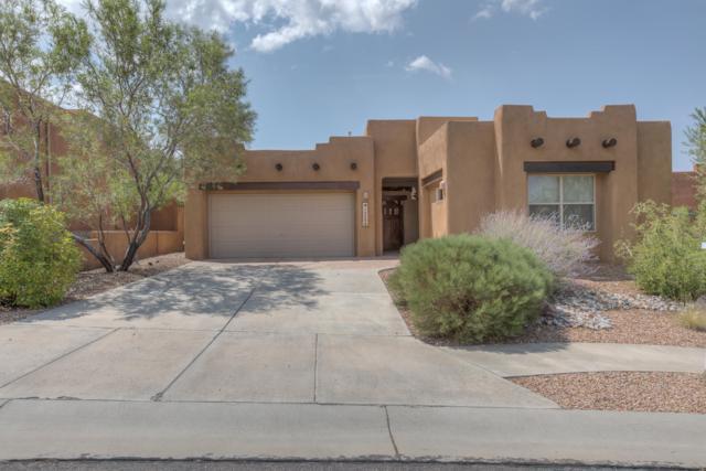 13304 Silver Peak Place NE, Albuquerque, NM 87111 (MLS #925858) :: Your Casa Team
