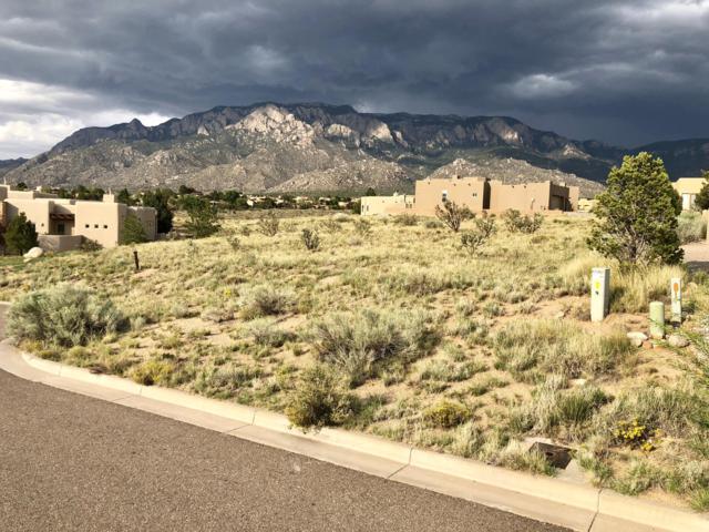 6804 Pino Arroyo Court NE, Albuquerque, NM 87111 (MLS #925871) :: Your Casa Team