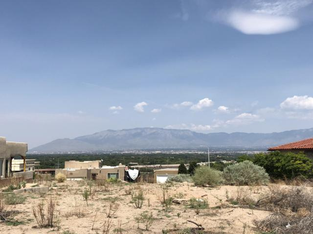 Cliffside SW, Albuquerque, NM 87105 (MLS #926476) :: The Bigelow Team / Realty One of New Mexico